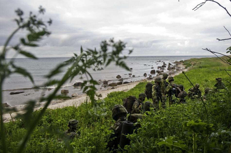 Danmark og Sverige øker forsvarssamarbeid